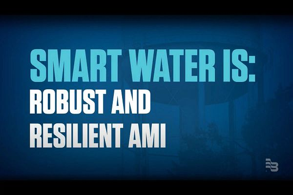 Robust and Resilient